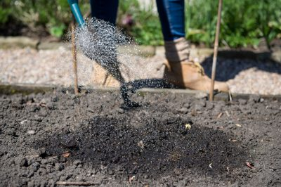 Saving water in your garden - an article from ITV's Katie Rushworth