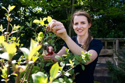 Katie Rushworth's article on the best fruit trees for pot planting
