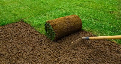 Laying a lawn from turf