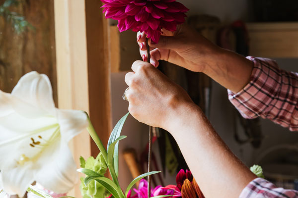 How to cut and dry flowers