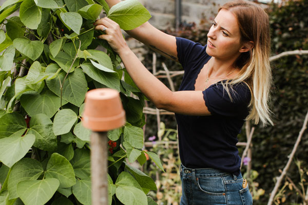 Looking after your garden during your holiday
