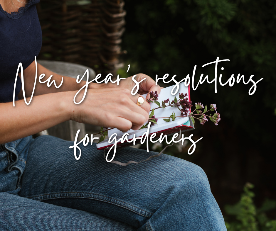 New year's resolutions for gardeners: tips to inspire all gardeners