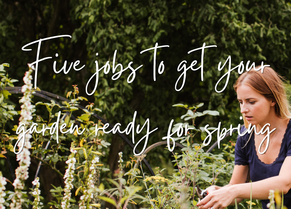 Five jobs to get your garden ready for spring