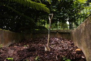A guide to composting at home: make your own compost