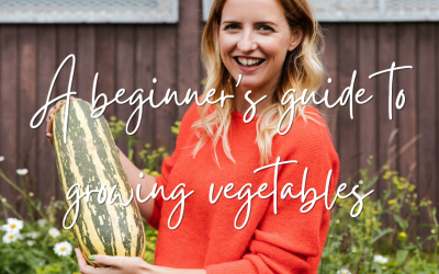 A beginner's guide to growing vegetables