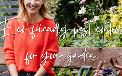 Eco-friendly pest control for your garden
