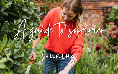 A guide to summer pruning