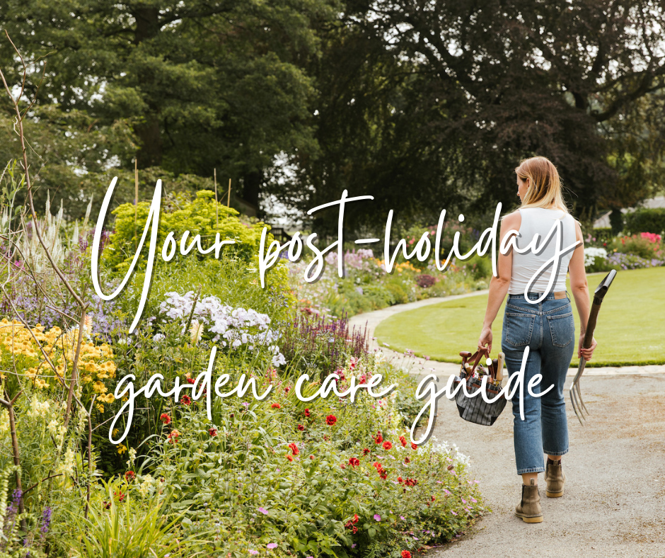 A post holiday garden care guide from Katie Rushworth