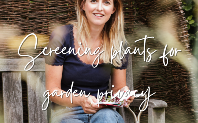 The best screening plants for garden privacy